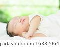 寶寶 寶貝 人類 16882064