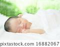 寶寶 睡相 寶貝 16882067