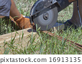 workers cuts rebar circular saw 16913135