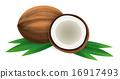 可可 椰子 水果 16917493