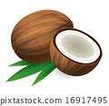 椰子 可可 水果 16917495