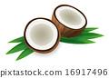 椰子 可可 水果 16917496