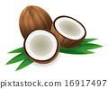 椰子 可可 水果 16917497