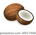 椰子 可可 水果 16917498