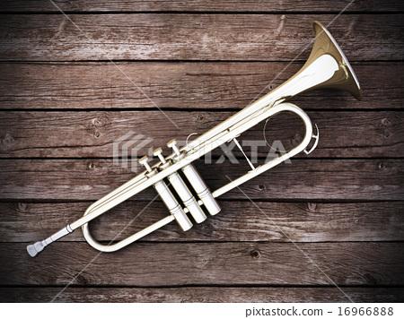 Trumpet on wood 16966888