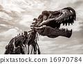 Tyrannosaurus rex skeleton 16970784
