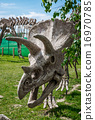 Triceratops skeleton outdoors 16970785