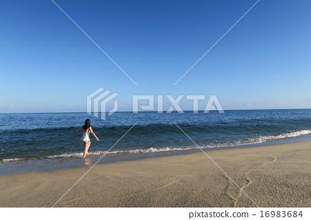 해변과 여성 16983684