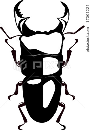 巨鍬甲蟲 巨鍬形甲蟲 節肢動物 17001223