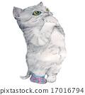 สัตว์เลี้ยงน่ารักพร้อมรองเท้าบู๊ตถาม 17016794