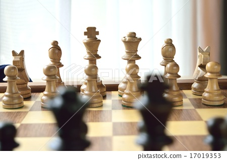 체스 17019353