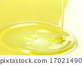 橄欖油 17021490