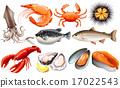 Seafood 17022543