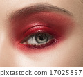 Close-up shot of female eye with makeup 17025857