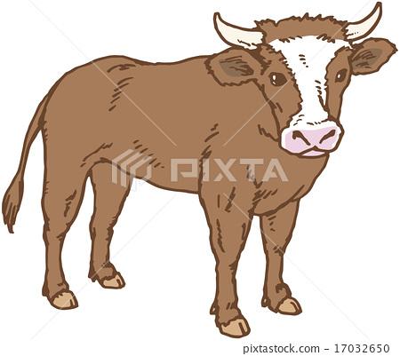 奶牛 牛 矢量 17032650