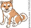 一只狗 17032652