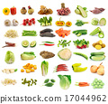 Vegetable collection isolated  17044962