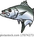 矢量 鱼 钓鱼 17074273
