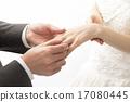 交换戒指 身体部位 婚礼 17080445