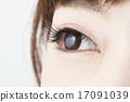 ม่านตา,ผู้หญิง,หญิง 17091039