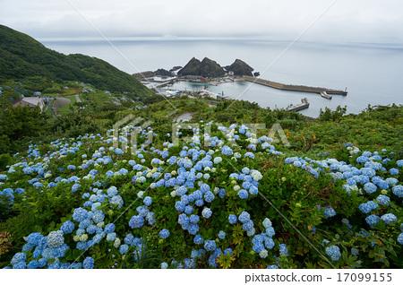 수국이 피는 竜飛崎에서 쓰가루 해협을 원하는 (초광각) 아오모리 현 17099155