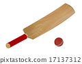 cricket bat and ball 17137312