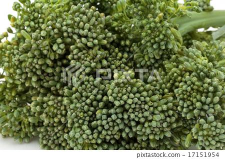 Broccoli 17151954