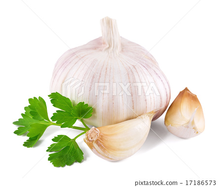 garlic decorated parsley leaves on white  17186573