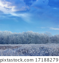 winter forest among snow fields landscape 17188279