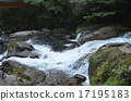 river 17195183