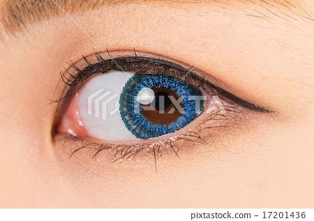 카라 콘과 마스카라 젊은 여성 colored contact lenses and mascara 17201436