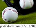 球 運動 美國 17203284