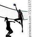 women volleyball players isolated silhouette 17213377