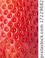 Fruits_106 17229682