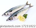 Seafood_002 17231022