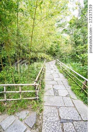 Tour of Shikoku's historic sites 17237539