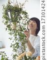 亞洲人 亞洲 插花藝術 17301424