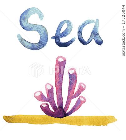 Watercolor sea sponge 17326044