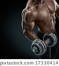 Strong and power bodybuilder doing exercises with dumbbell 17330414
