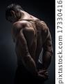 Handsome muscular bodybuilder turned back 17330416