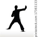 karate silhouette 17363133