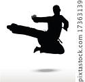 karate silhouette 17363139