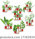 Pot Plants Set 17383839