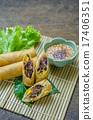 spring rolls 17406351