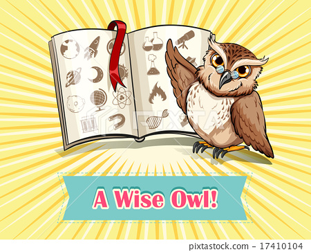 English saying a wise owl 17410104