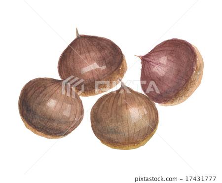 Chestnut cream 17431777