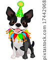 Boston Terrier Birthday 17442968