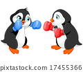 Penguin Boxing 17455366