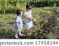 child, harvest, person 17458194