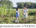 child, harvest, person 17458201